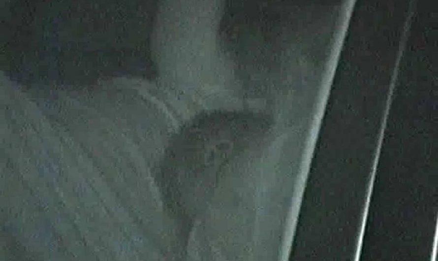 「充血監督」さんの深夜の運動会!! vol.083 手マンシーン   OLのボディ  48PIX