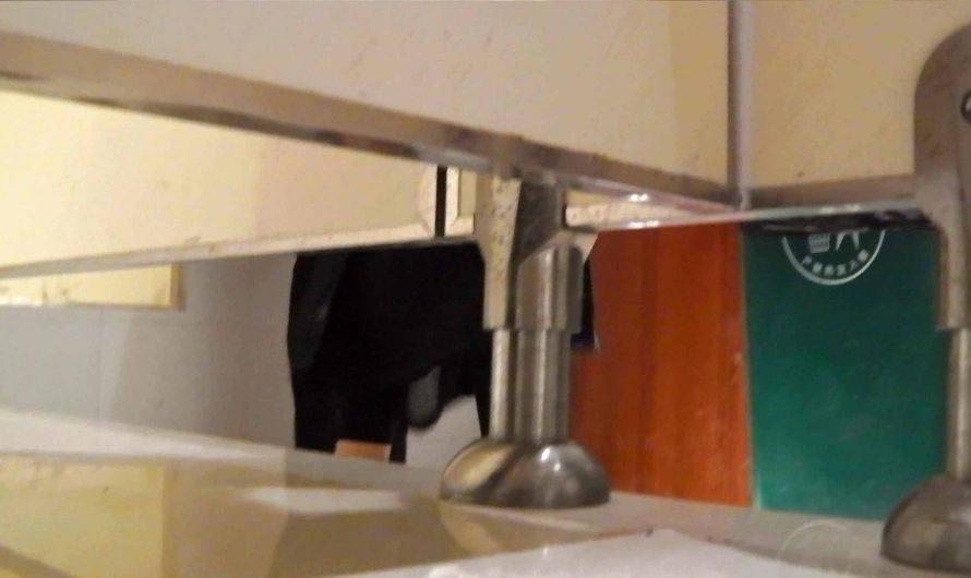 洗寿観音さんの 化粧室は四面楚歌Nol.6 OLのボディ   洗面所  84PIX